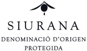 logo1-OPCIO A